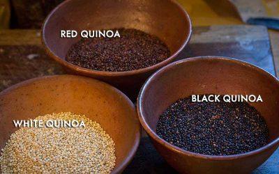 Salade tiède de quinoa caraélisé